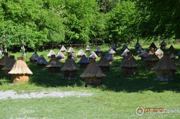 Стоимость экскурсий в абхазии 2019