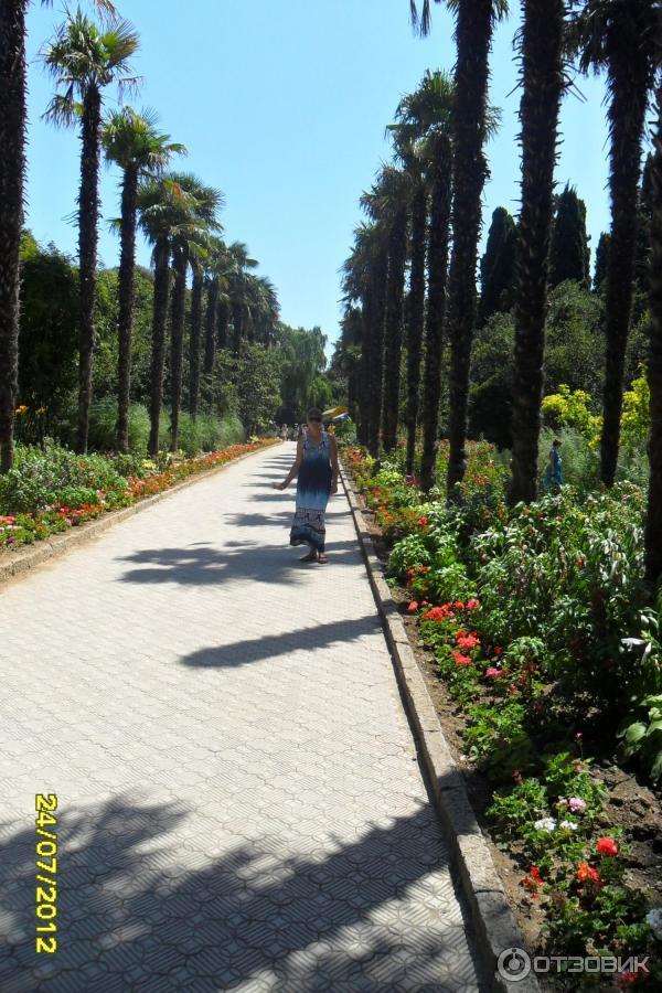 люстры фото пляж никитский ботанический сад даже