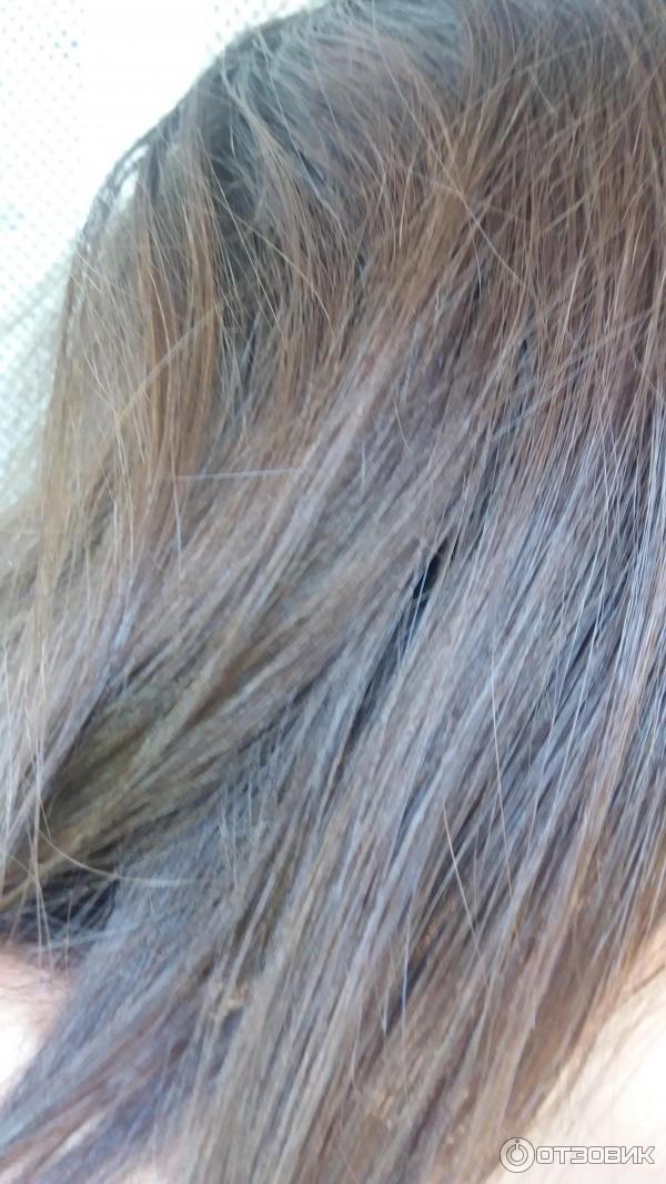 эстель пепельно русый фото на волосах узнать, как выглядит