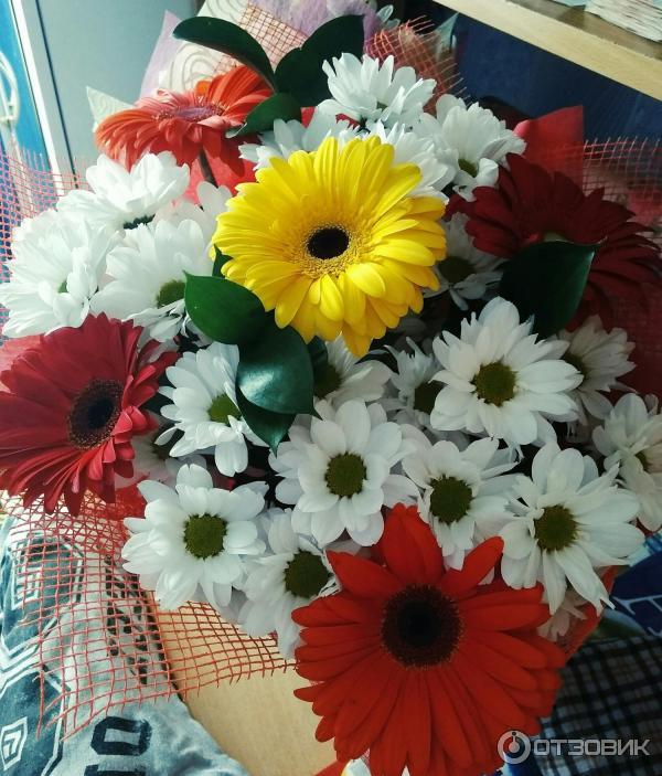 Флора-дизайн магазин цветов архангельск