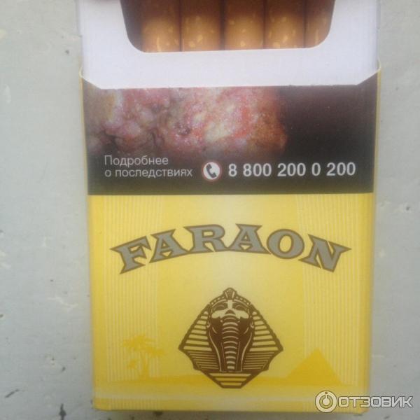 Сигареты фараон купить в нижнем новгороде электронная сигарета одноразовая luxlite classic