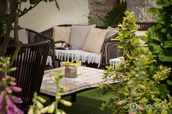 Котик на диванчике рядом с домиком