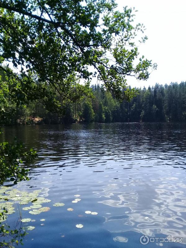 Озеро дружинное фото