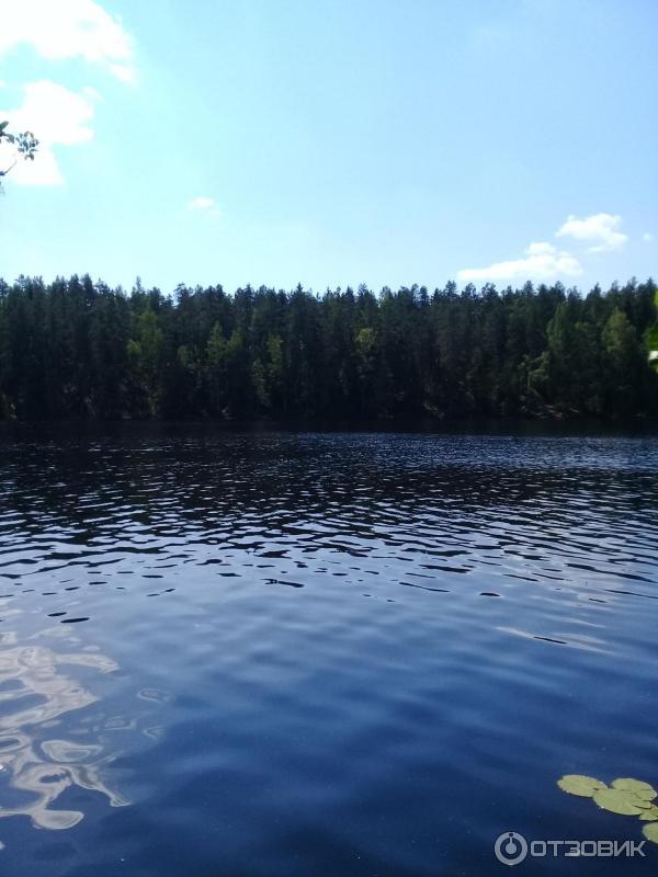 меня озеро дружинное фото того, волонтеры вышли