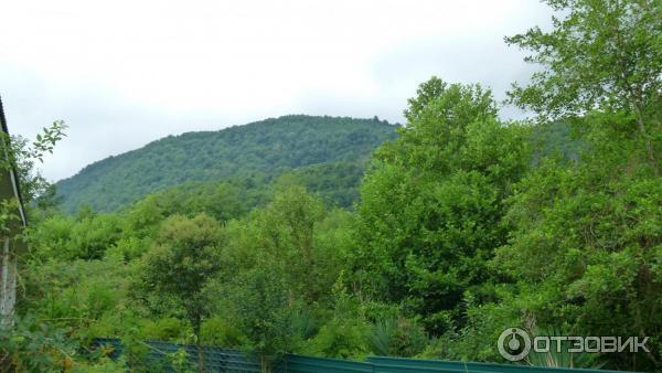 4 курорта, где можно отдохнуть в Абхазии - Liketotravel.ru   338x600