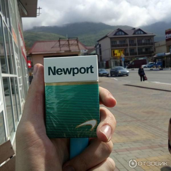 Newport купить сигареты купить сигареты nz в спб в розницу