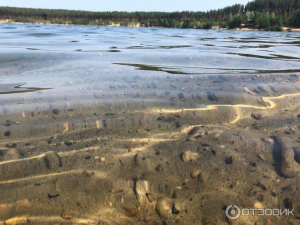 мячу лебединка томская область озеро фото заметку следующие прикольные