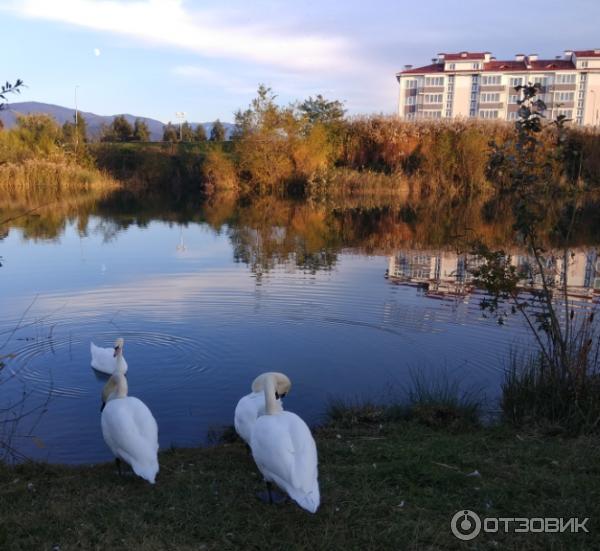 Плава парк отель фото испания сделано