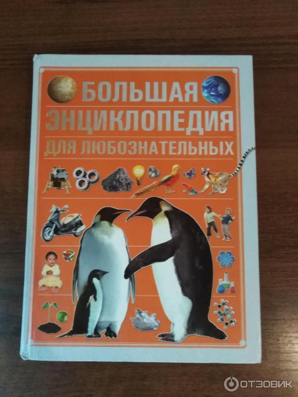 Большая энциклопедия для любознательных картинки
