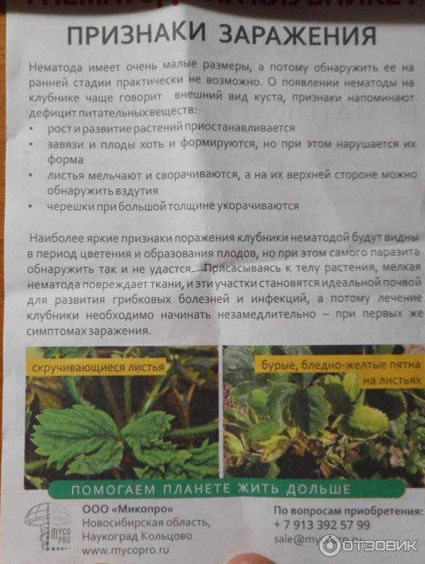 Нематофагин-Микопро фото