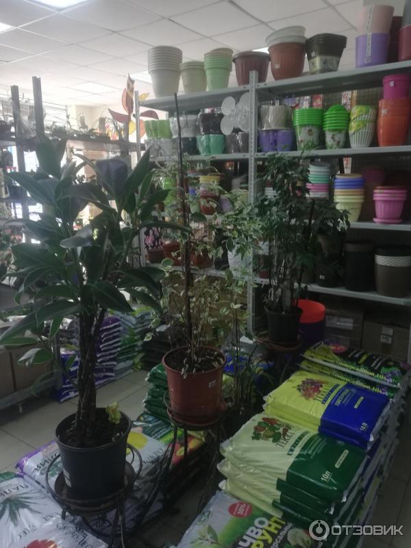 Отзывы О Магазине Садовник