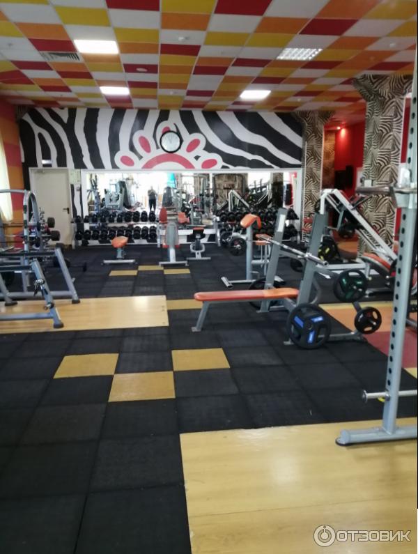 фитнес клубы в москве ювао